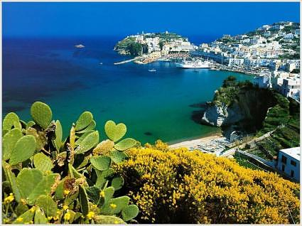 Port of Ponza 7586481 Ponza & the Pontine Islands, Italy